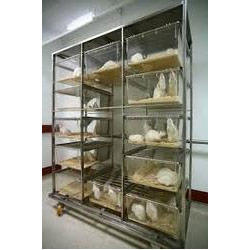 Deluxe Rat Cages