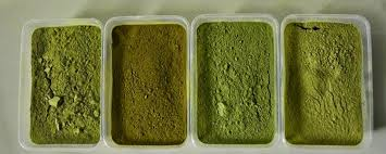 Kratom Powder 01