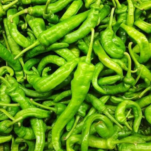 Hot Green Chilli