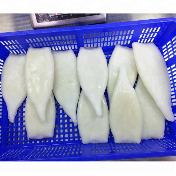 Frozen Squid Tube