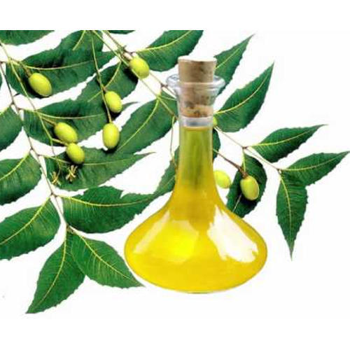 Neem Fruit Oil