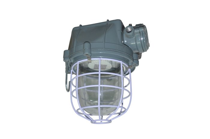 LED Flameproof Light