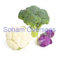 Fresh Broccoli and Cauliflower