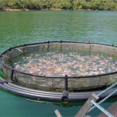 Aquaculture Shade Net 02