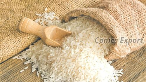 1121 Sella Basmati Rice Exporters and Suppliers Chennai India