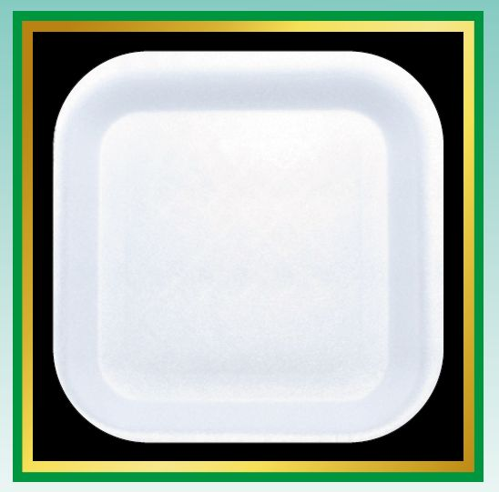 Square Disposable Plates 01