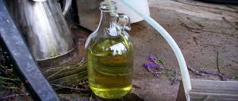 Distilled Essential Oil 01