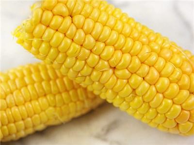 Whole Yellow Corn 01