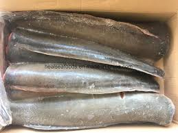 Frozen Catfish Headless