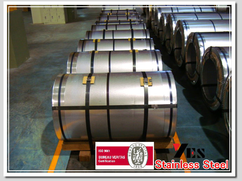 Stainless Steel Coil 05
