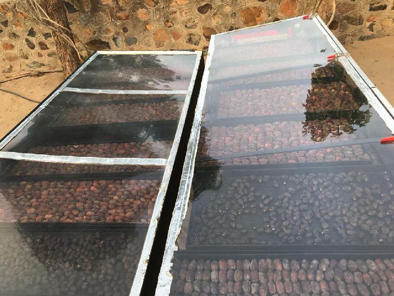Solar Fruits Dryer