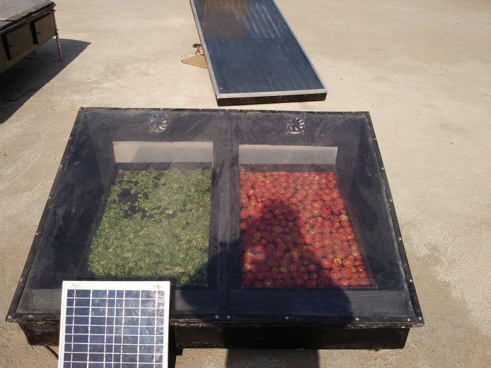 Vegetable Solar Dryer 02