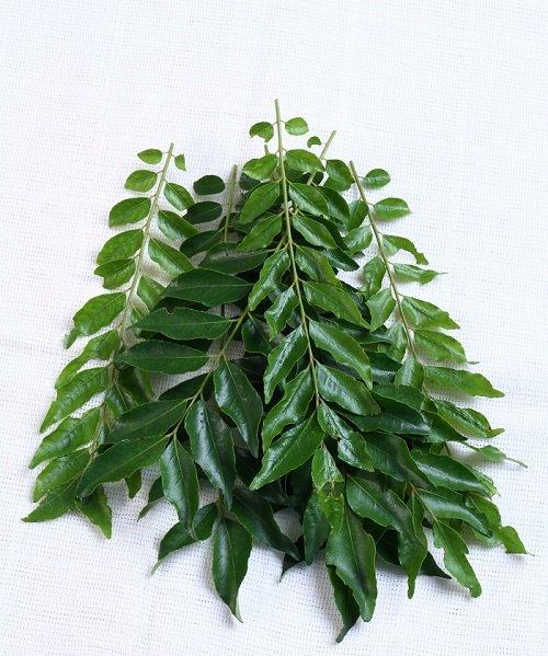 Curry Leaf Oil