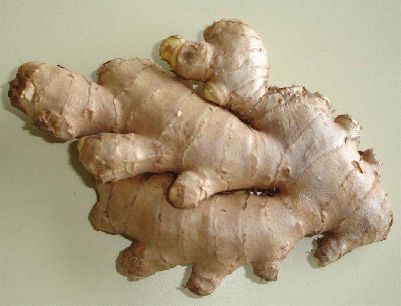 Fresh Ginger (Low Fiber)
