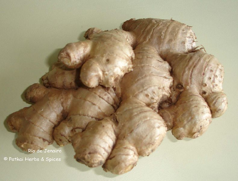 Fresh Ginger (High Fiber)