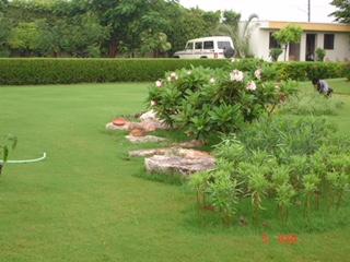 Landscape Development Service 05