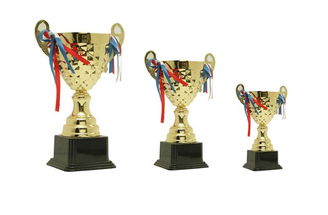 Appreciation Trophies