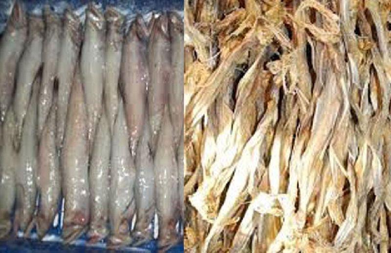 Dried Fish 02