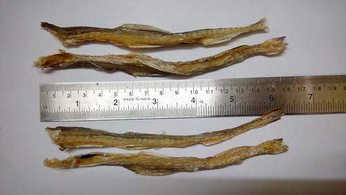 Dried Fish 04