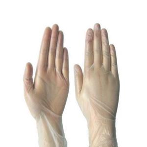 Vinyl Powder Free Hand Gloves