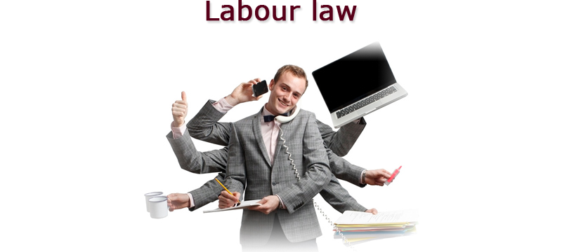 Labour Law Consultant Services
