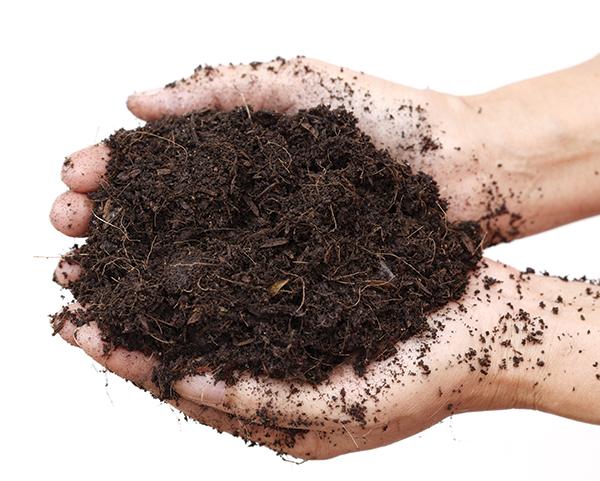 Composting Culture