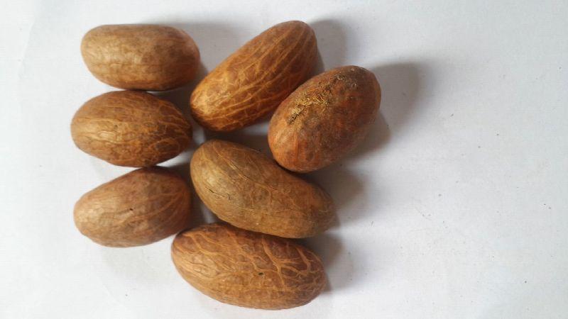 Ahgahsi Herbal Seeds
