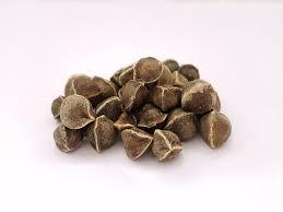 Moringa Herbal Seed