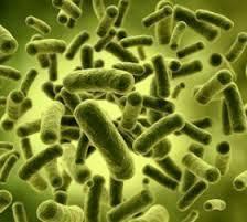 Bactericide (Aldehyde Type)