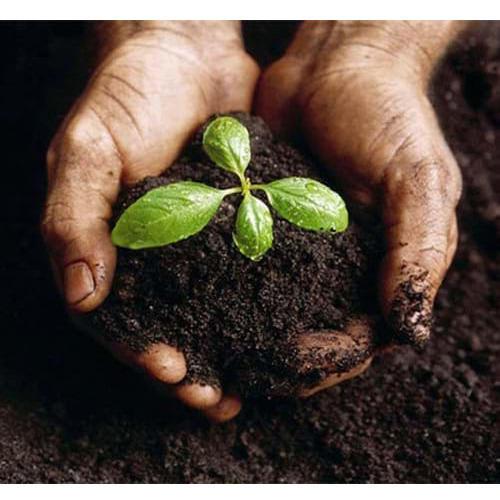 Bio Meal Organic Manure