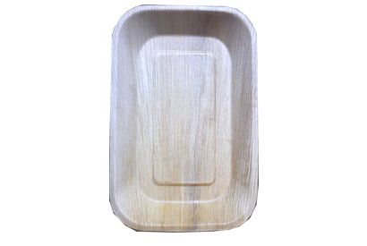 9-6 Inch Rectangle Disposable Plate