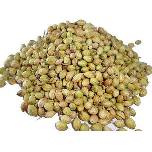 Natural Coriander Seeds
