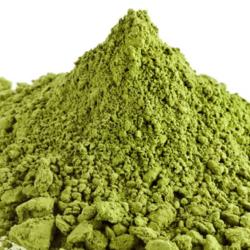 Munaga Leaf Powder