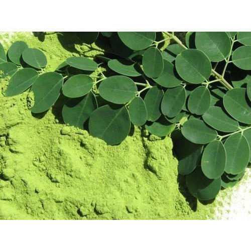 100% Pure Moringa Leaves Powder