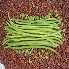 Organic Barbati Beans