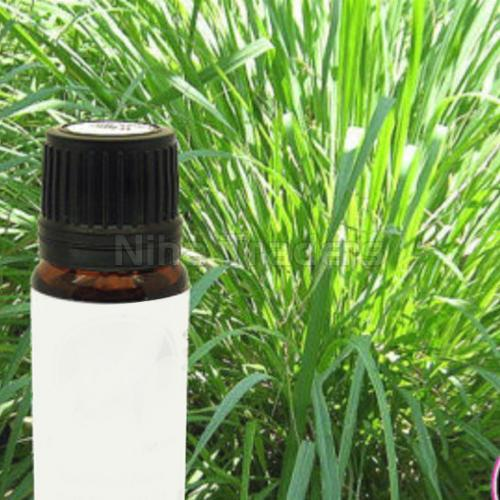Ayurvedic Ginger Grass Oil