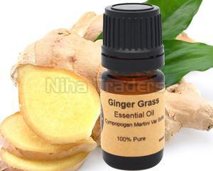 Essential Ginger Grass Oil