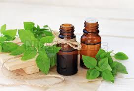 Herbal Tulsi Oil