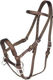 Brown Horse Bridle