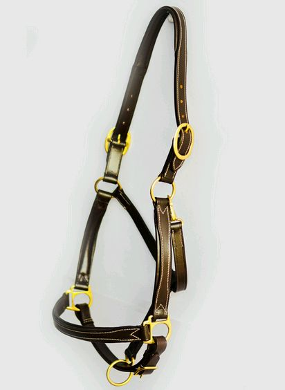 Brown Horse Halter 01