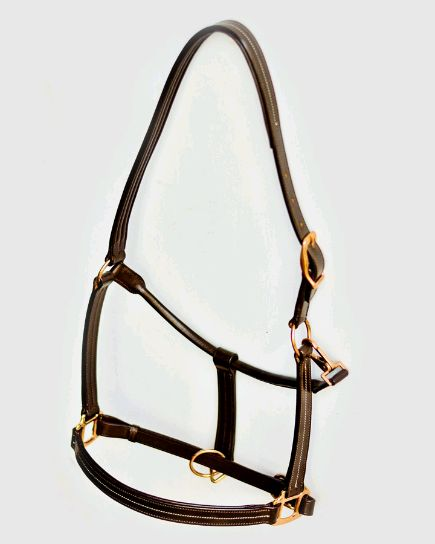 Brown Horse Halter 02