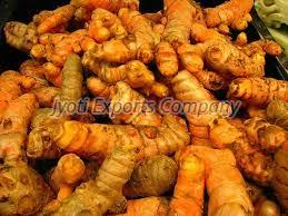 Raw Turmeric Finger