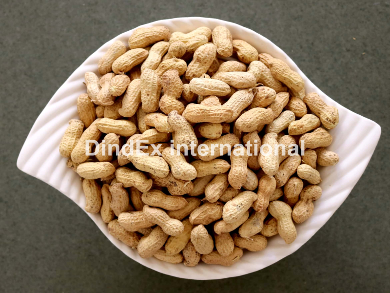 Pure Shelled Peanuts