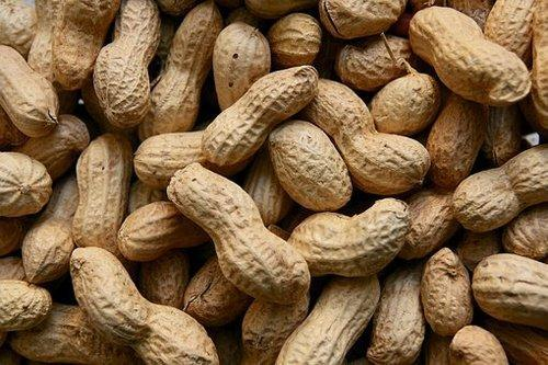 Shelled Groundnuts 02