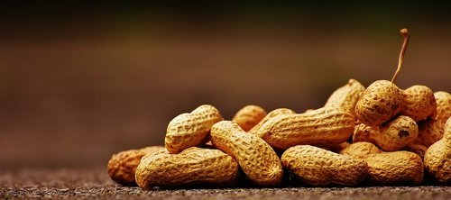 Shelled Groundnuts 03