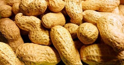Shelled Groundnuts 04