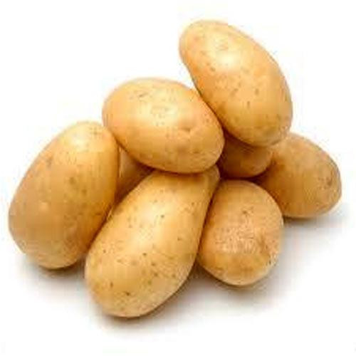 Fresh Medium Potato
