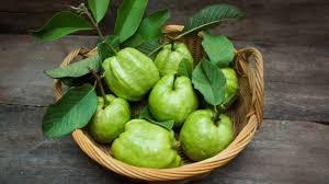 Fresh Sweet Guava