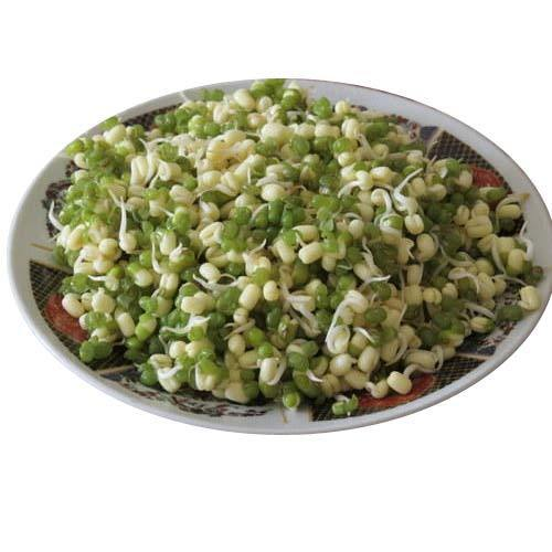 Freeze Dried Sprouts