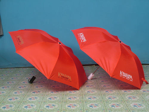 Two Fold Umbrella
